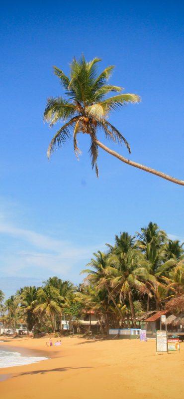 Sri-Lanka-Tours-Hikkaduwa-beach5