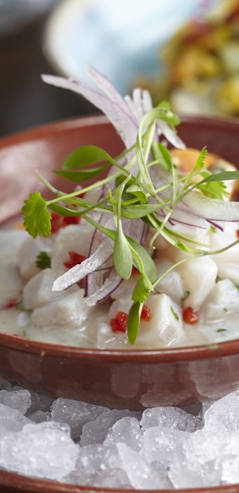 Sea-bass-ceviche