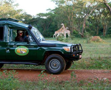 chobe_safari_lodge_safari_drive-lo