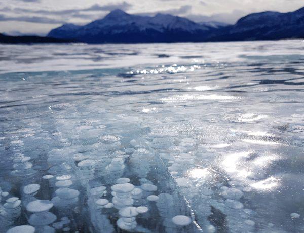 Abraham Lake Bubbles BBB