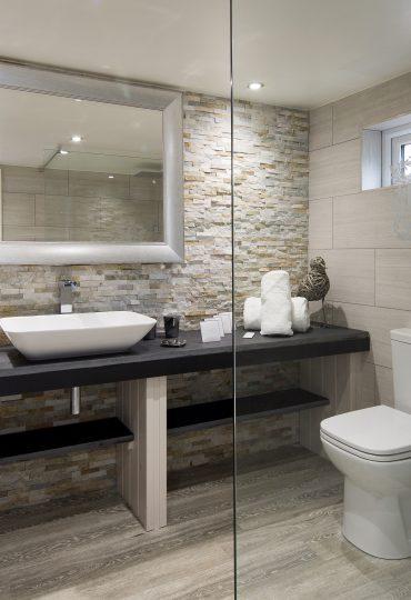 BathroomCaryArms