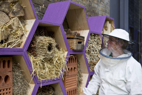 Camilla With Bee Hotel