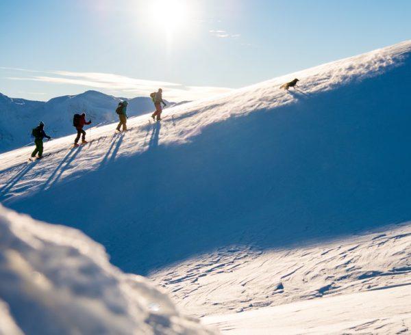 Freeride The Fjords Skitour With Viggo 003 Sverre Hjornevi