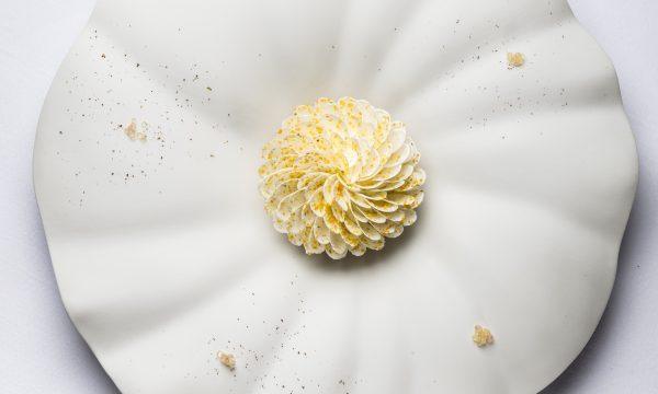 L'Orangerie © Anne Emmanuelle Thion Fleur de Vacherin