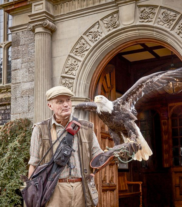 falconer at Bovey Castle