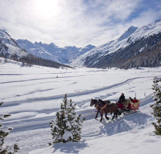 St Moritz Horse Sleigh