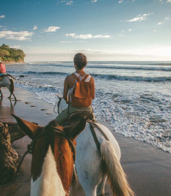 horse riding latitude 10