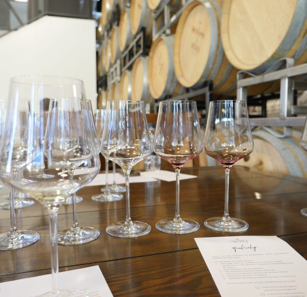 checkmatewinery tasting