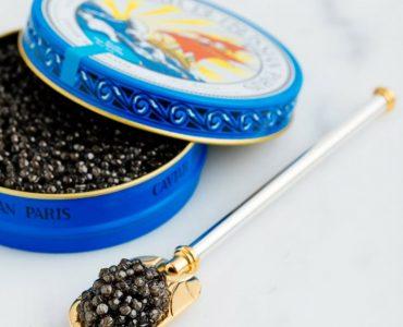 caviar-beluga3